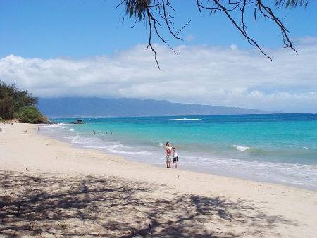 Voted As The Best Island In World For Its Flora And Fauna Maui Is Rich Total Of Nine Pools Makes It A Famous Snorkeling