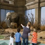 Kid-Friendly Museums That Your Children Will Love