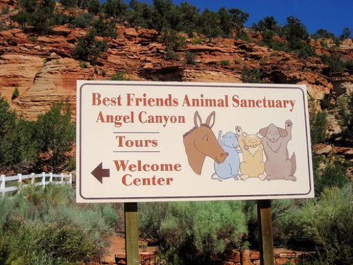 Best Friends Animal Sanctuary Canyon