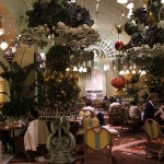 The Buffet at Wynn