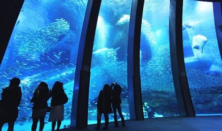Sea-Paradise-Aquarium