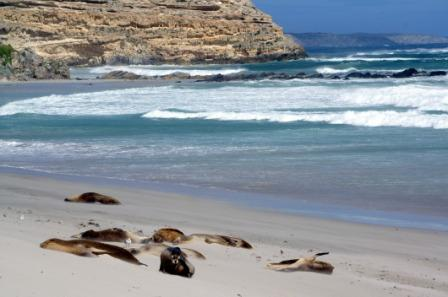 South Australia, Kangaroo Island
