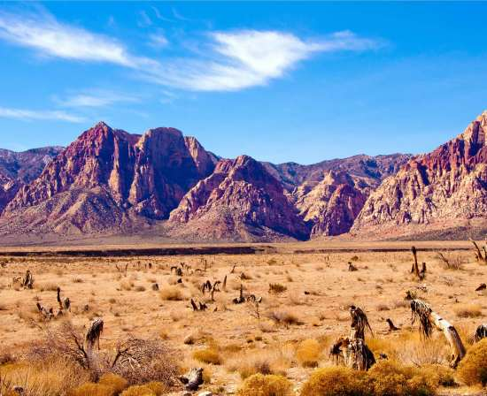 must to know facts about nevada