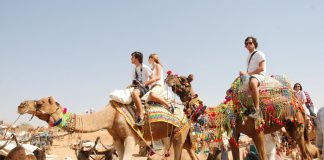5 Top Camel Safari Places in India