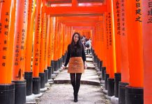 7 Best Destinations in Japan
