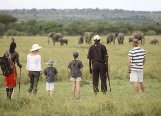 Family Safari in Kenya